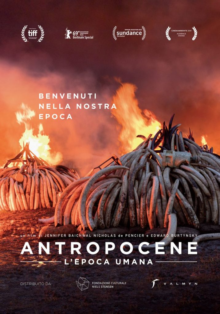 film cinema antropocene